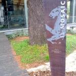 Il Museo: ingresso