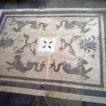 Il Museo: particolare del mosaico