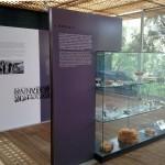 Il Museo: esposizione