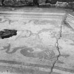 Il mosaico del frigidarium all'epoca del ritrovamento